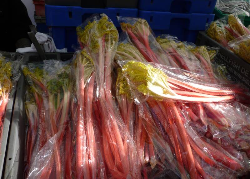 Brunches of rhubarb