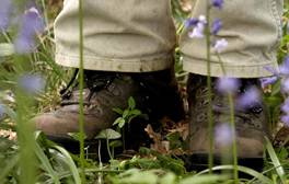 Boots in bluebells