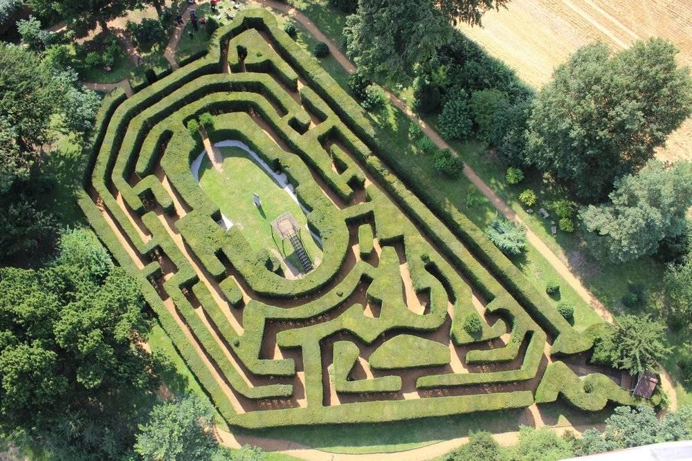 Saffron Hedge Maze