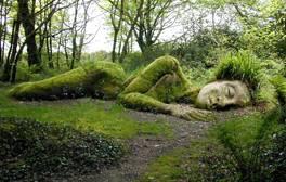 Une s lection des meilleurs jardins anglais visitengland for Jardins tropicaux contemporains