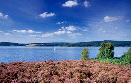 Kielder Water and Forest Park, Northumberland (c) VisitEngland