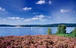 Kielder Water and Forest Park, Northumberland (c) VisitEngland