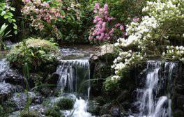 Minterne, Dorset (c) VisitEngland, Jeremy Walker