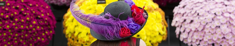 RHS Chelsea Flower Show 2014 - London (c)RHS, Justin Tallis 1500x298
