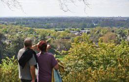 Richmond Park. London (c)The Royal Parks, Greywolf