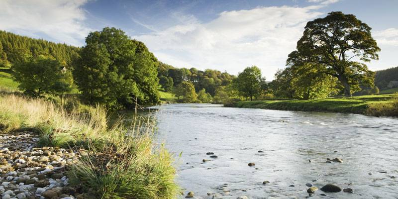 River Wharfe, Yorkshire Dales