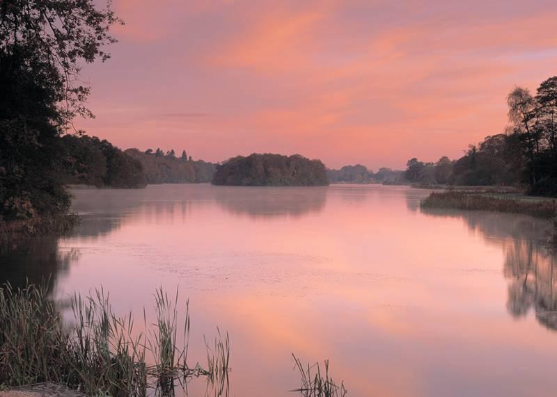 Trentham Estate at sunset, Staffordshire