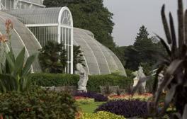 Royal Botanic Gardens - Kew - Palm House (c) VisitEngland. RGB Kew 264x168