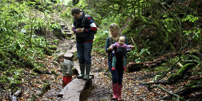Family in the Forest of Dean