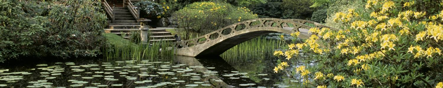 Tatton Park - Cheshire (c)National Trust Images, Stephen Robson