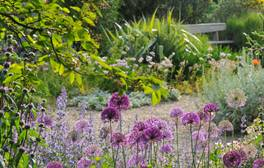 The Beth Chatto Garden (c)VisitEngland, VisitEssex VE12377 264x168