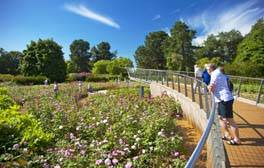 The Savill Garden, Windsor Great Park (Rose Garden) (c) VisitEngland