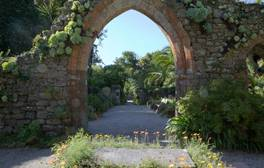 Tresco Abbey Garden - Isles of Scilly (c) VisitEngland 264x168