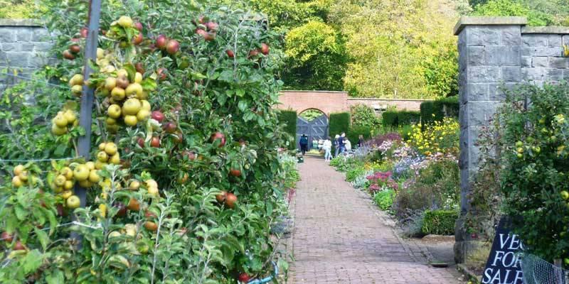 Barley Wood Walled Garden