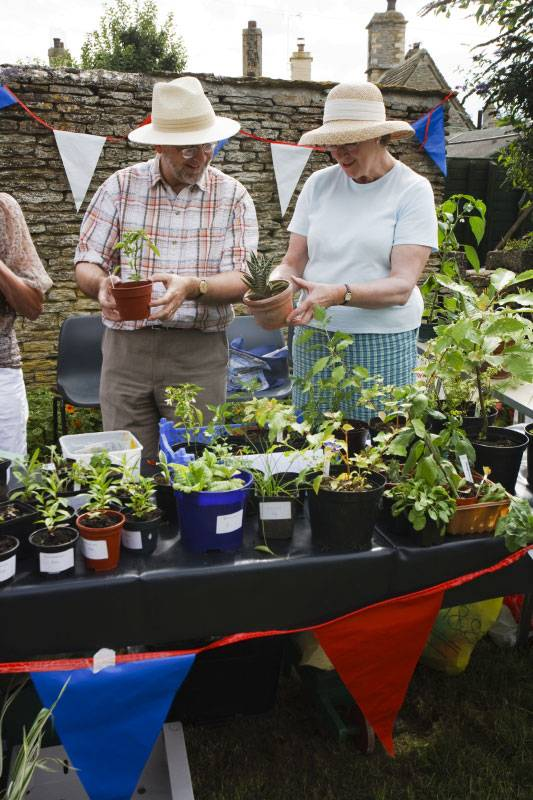 A green-fingered couple at a village fete in Gloucestershire