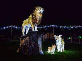 The Lanterns, Chester Zoo