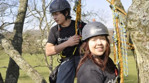 Two people climbing a tree with the Climbing Wild Centre.