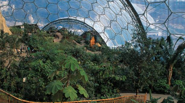 Inside the Domes at Eden Project