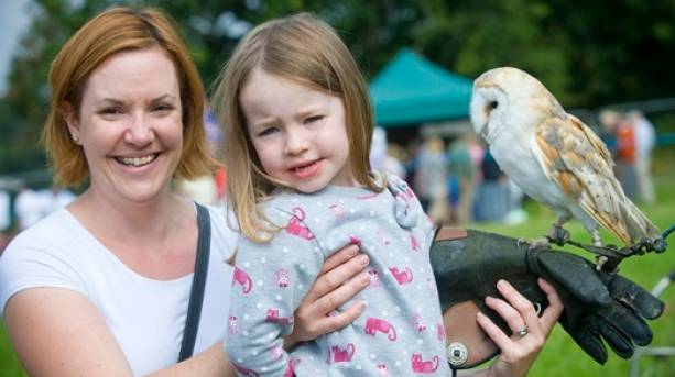 The National Forest & Beyond - National Forest Wood Fair Falconry Display