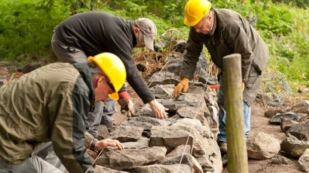 The National Forest & Beyond - The Conservation  Volunteers Dry stone walling 2