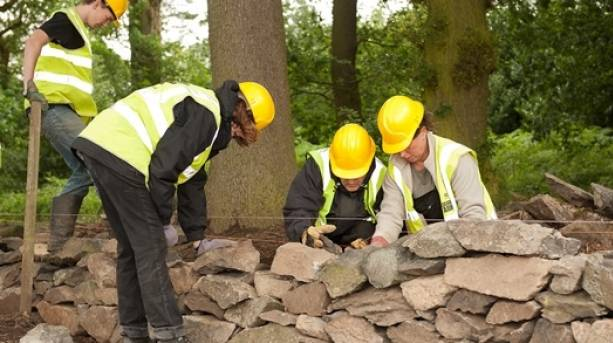 The National Forest & Beyond - The Conservation  Volunteers dry stone walling