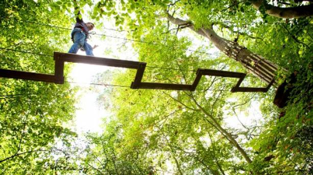 On the high ropes course at Go Ape! Wendover, Buckinghamshire