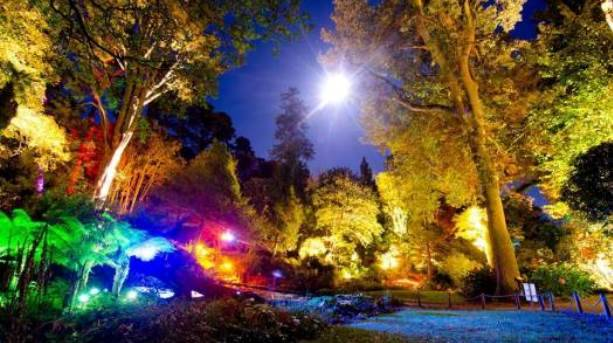 Enchanted Floodlit Gardens