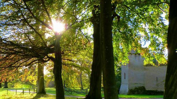 Autumn at Croft Castle on the Mortimer Trail