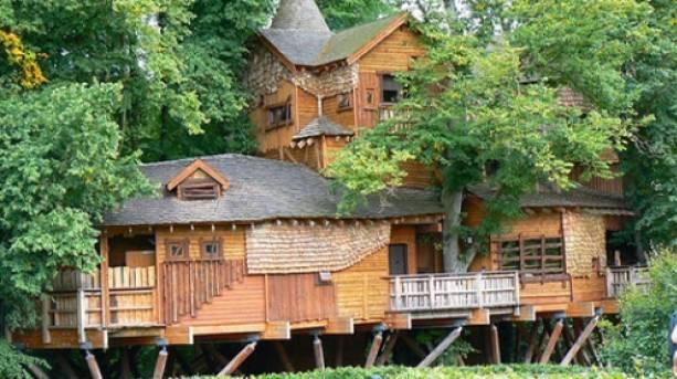 Alnwick Tree House and Restaurant