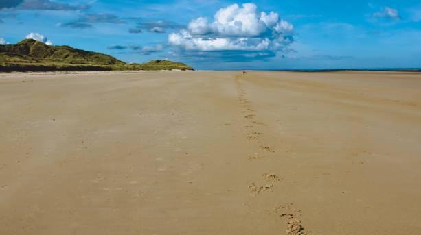 AONB beach between Seahouses and Bamburgh
