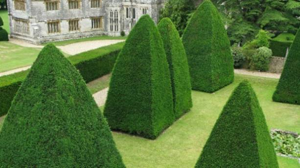 Athelhampton House and Gardens in Dorset