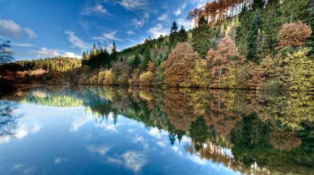 Autumn colour at Staindale Lake, Dalby Forest