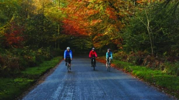 Enjoying the autumn colours Howardian Hills