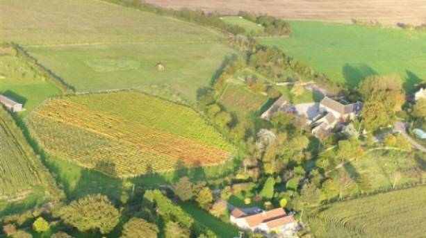 Aerial view of Quoins Vineyard
