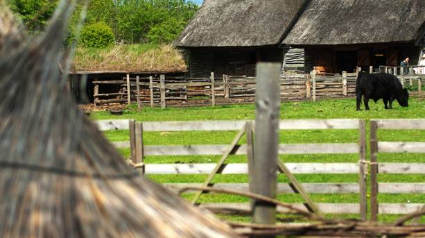 The reconstructed Anglo-Saxon farm at Bede's World, Jarrow, South Tyneside