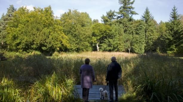 Brandon Country Park, The Brecks, Suffolk