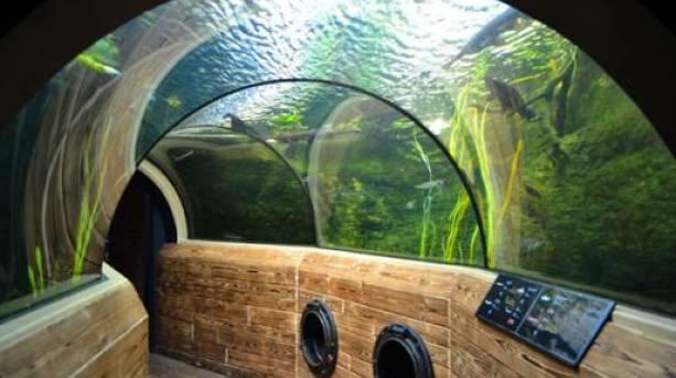 Aquarium at Bristol Zoo Gardens © Angharad Paull