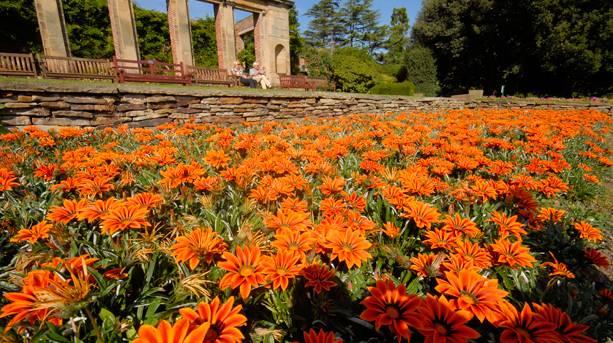 Cannon Hall gardens