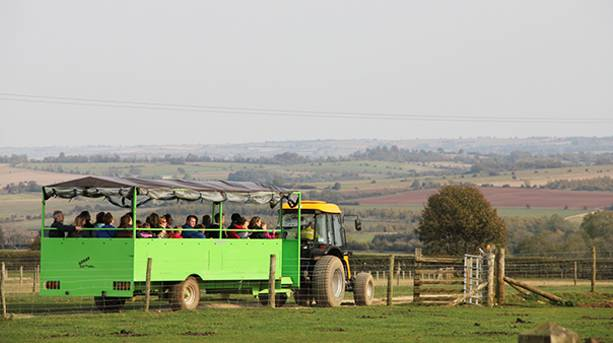 Farm Safari Ride at Adam Henson's Cotswold Farm Park