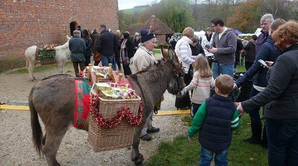 Christmas Market Donkey at the Weald and Downland Museum