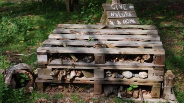 A bench at RSPB Minsmere