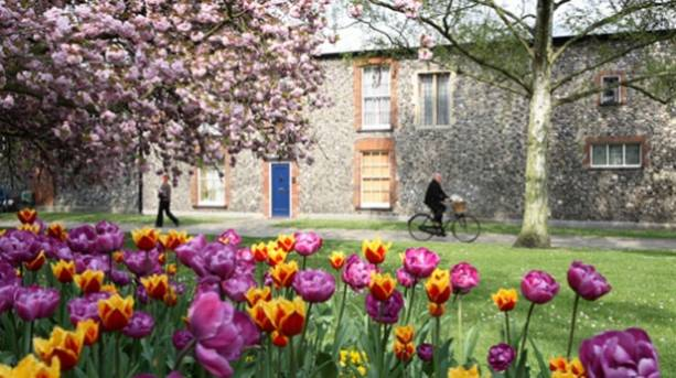 Norwich Cathedral Close in spring