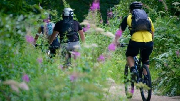 Cycling in Hamsterley Forest, Durham