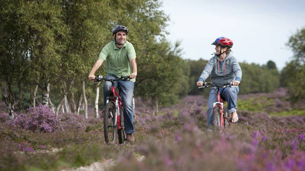 Two people cycling in Suffolk