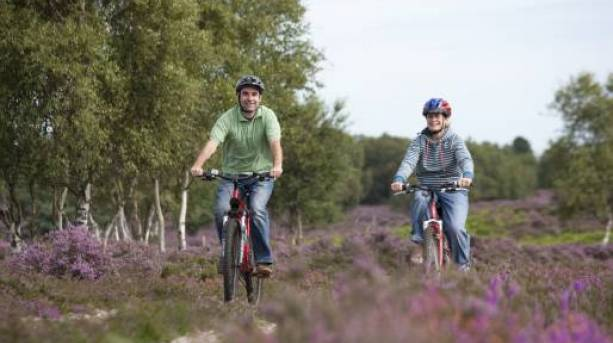 Cycle with your family around Suffolk