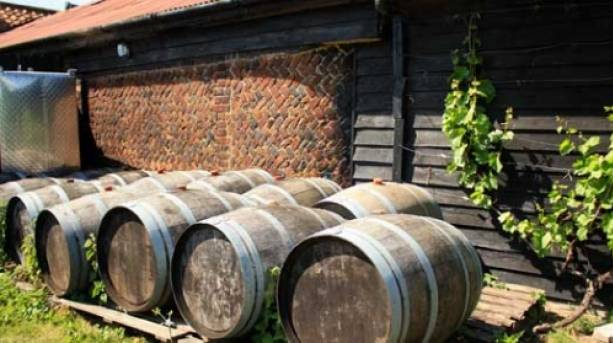 Where the nectar is stored at Dedham Vale Vineyard