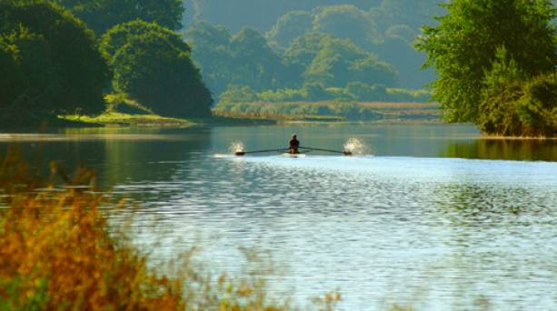 Rower on the River Dart