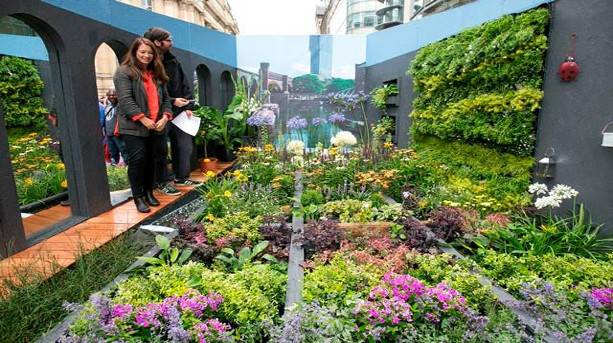 Dig the City hanging garden