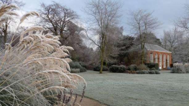 Dunham Massey Winter Garden