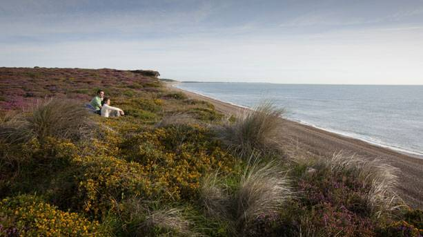 Looking out to sea from Dunwich Heath